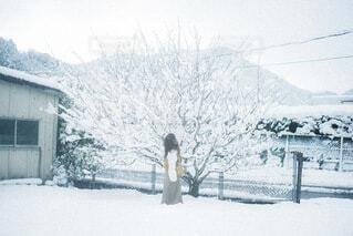雪景色の写真・画像素材[4137751]