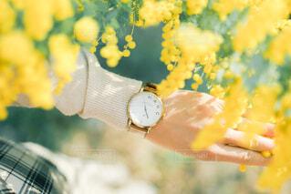 時計の写真・画像素材[4315183]