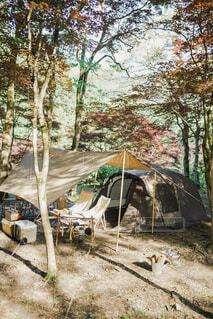 キャンプの写真・画像素材[4437133]