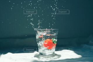 トマトの写真・画像素材[4654367]