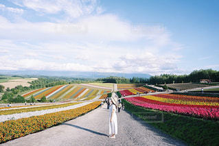 花畑に囲まれての写真・画像素材[2378329]