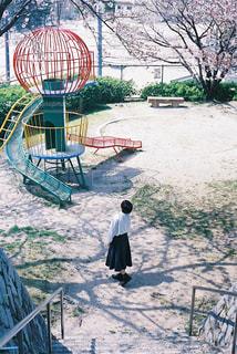 桜の公園、桜の季節の写真・画像素材[2783297]