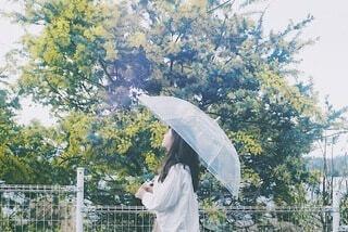雨の日の散歩の写真・画像素材[4644573]