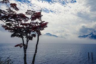 中禅寺湖の霧とうろこ雲のある風景の写真・画像素材[2417068]