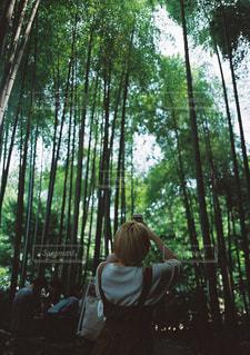 緑,ワンピース,女の子,レトロ,竹林,ポートレート,フィルム,鎌倉,フィルム写真,フィルムフォト