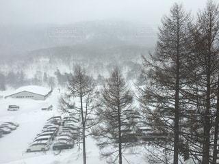 自然,風景,アウトドア,空,冬,森林,スポーツ,雪,屋外,駐車場,霧,山,樹木,人物,スキー,ゲレンデ,レジャー,スキー場,斜面,ウィンタースポーツ,草木,針葉樹,日中,覆う