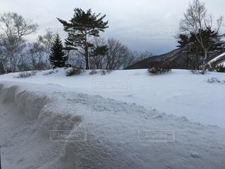自然,アウトドア,空,冬,スポーツ,雪,屋外,山,景色,樹木,人物,ゲレンデ,レジャー,スキー場,日中,冷