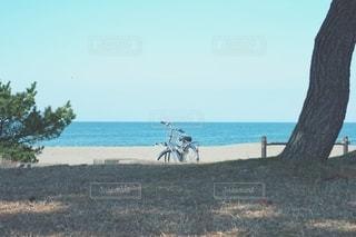海と自転車の写真・画像素材[3599004]