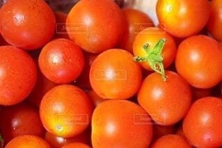 食べ物,自然,夏,緑,赤,鮮やか,オレンジ,果物,トマト,野菜,いっぱい,食品,たくさん,おいしい,グリーン,家庭菜園,明るい,農業,栽培,レッド,集合,ビタミン,農家,食材,壁紙,彩り,ベジタブル,リコピン,へた,育成,かがみ,クローズ アップ,液滴