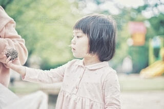 松ぼっくりを自慢する女の子の写真・画像素材[4448776]