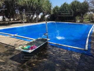 水の体の横にあるプールの写真・画像素材[1352624]