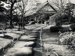 庭園の写真・画像素材[2850258]