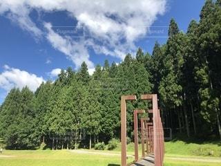 公園のベンチの写真・画像素材[2434023]