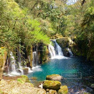 自然,夏,屋外,川,水面,景色,滝