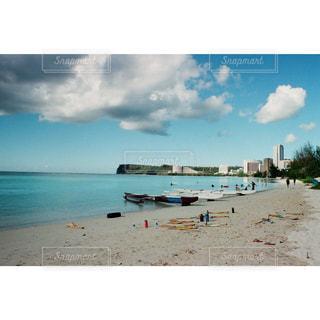 砂浜の上に座っている鳥の写真・画像素材[2412542]
