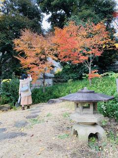 庭園を散策する20代の女性。の写真・画像素材[2819235]