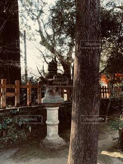 境内にひっそりとたっている石燈籠の写真・画像素材[2918333]