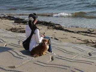 浜辺で犬を飼っている人の写真・画像素材[2462515]
