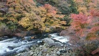 水域の上の大きな滝の写真・画像素材[2514110]