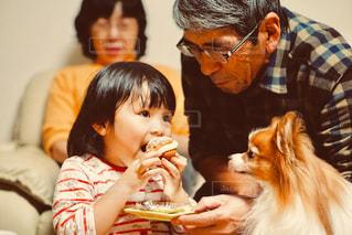 家族,犬,キッズ,リビング,室内,子供,女の子,レトロ,ペット,おじいちゃん,おばあちゃん,祖父,祖母,幼児,パピヨン,フィルム,シュークリーム,孫,フィルム写真,祖父母,団欒,フィルム風,フィルムフォト