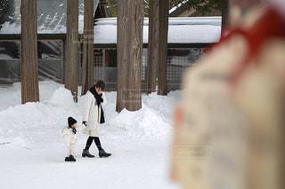 雪に覆われた斜面をスノーボードに乗っている人の写真・画像素材[2809917]