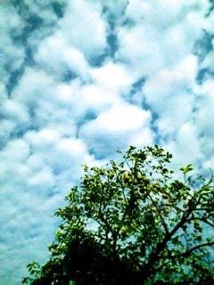 天高くの写真・画像素材[2436197]