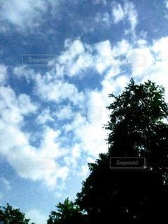 高く清んだ空にの写真・画像素材[2446171]
