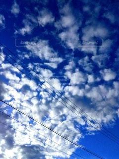 白と青のコントラストの写真・画像素材[2460256]