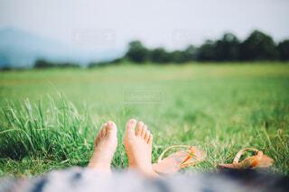 芝生でゆっくりの写真・画像素材[4627712]