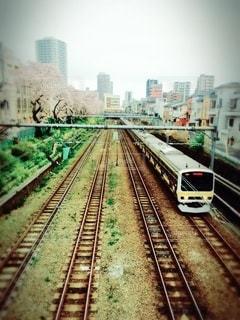 桜,屋外,電車,道,高層ビル,鉄道,フィルム,セット,高層マンション,車両,レール,フィルム写真,長い,フィルムフォト