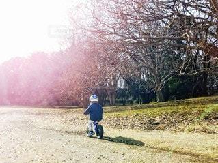 冬の公園で遊ぶこどもの写真・画像素材[2438471]