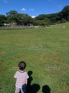 緑豊かな野原に立つ小さな男の子の写真・画像素材[2414172]