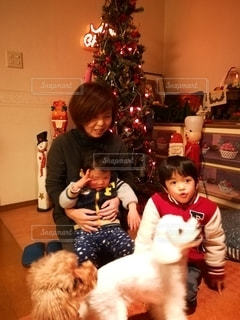 クリスマスツリーとおばあちゃんとの写真・画像素材[2440100]