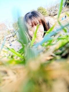 冬晴れと草原の写真・画像素材[2834346]
