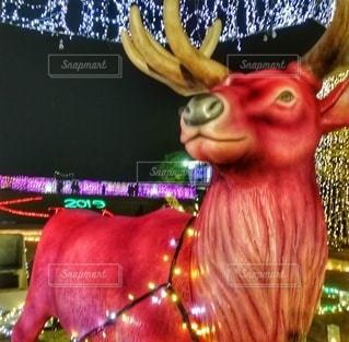 クリスマスイルミネーションの写真・画像素材[2835077]