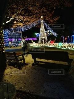 クリスマスイルミネーションの写真・画像素材[2835082]
