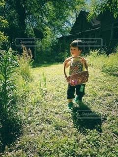 1歳少年の裏庭でイースターエッグハンティングの写真・画像素材[3031253]