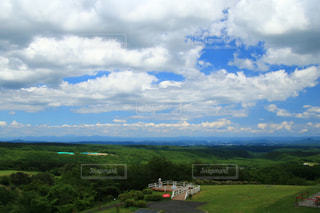 空に雲が立つ大きな緑の畑の写真・画像素材[3301291]
