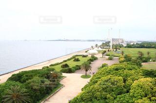 水の体を持つ大きな緑の風景の写真・画像素材[3301292]