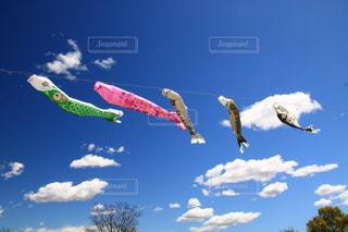 空に凧を飛ばす人々のグループの写真・画像素材[3301298]