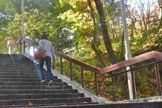 石段を登る女子の写真・画像素材[2742181]