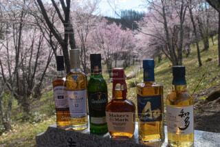 神社,ガラス瓶,アルコール,アンバサダー,桜公園,カメラが好き,ちょっとしたご褒美,ハーフボトル,ウィスキーが好きでしょ,写真の世界