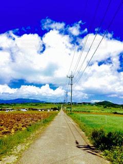 自然,屋外,青空,田舎,鮮やか,ナチュラル,フィルム,天気,景観,草木,フィルム写真,フォトジェニック,空模様,フィルムフォト