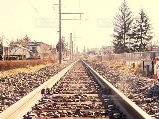 屋外,電車,線路,電線,旅行,地面,続く,鉄道,フィルム,まっすぐ,日中,レール,フィルム写真,フィルムフォト