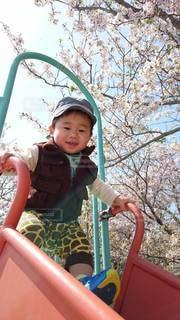 男性,子ども,桜,屋外,人,笑顔,少年