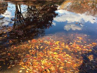 水たまりに空の写真・画像素材[2459302]
