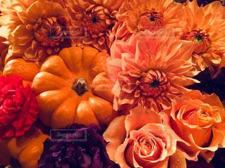 花束の写真・画像素材[2506137]