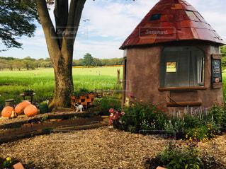 可愛いお庭の写真・画像素材[2508162]