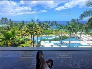 ホテルのチェックインエリアからの景色の写真・画像素材[3530096]