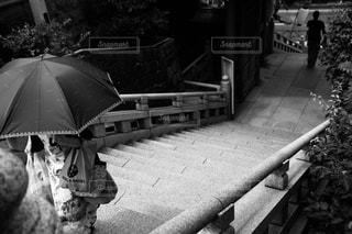 夏,階段,モノクロ,日傘,フィルム,湯島天神,フィルム写真,フィルムフォト